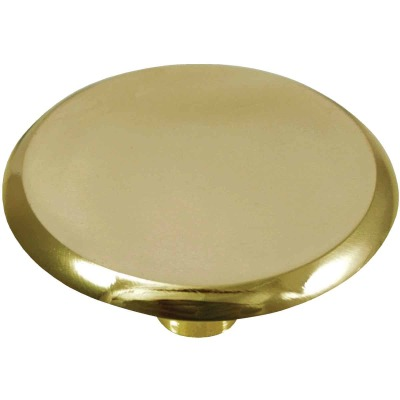 Laurey Polished Brass Concave 1-1/2 In. Cabinet Knob