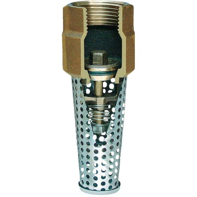 Simmons 1 In. Silicon Bronze Foot Valve, Lead Free